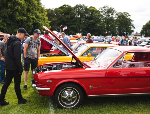 A CRACKING TURNOUT FOR THE STARS & STRIPES WEEKEND AT TATTON PARK